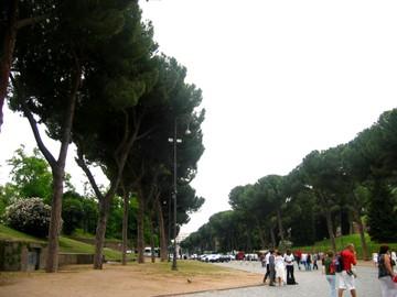 Rome_29_2