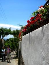 Capri_20